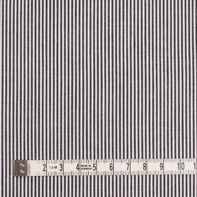 コットン&リネン×ストライプ(ブラック)×サージ イメージ4