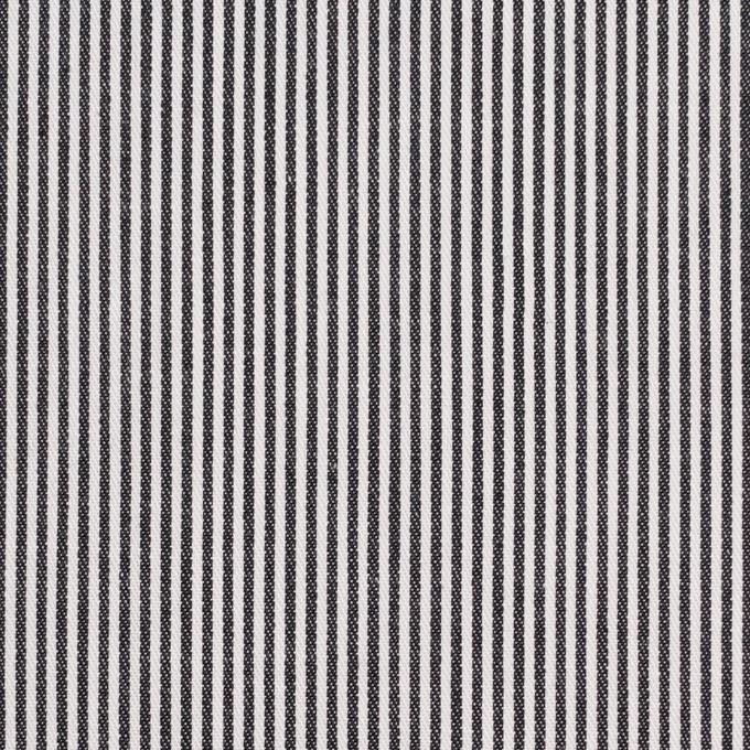 コットン&リネン×ストライプ(ブラック)×サージ イメージ1