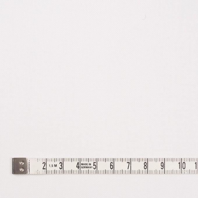 コットン×無地(オフホワイト)×オックスフォード イメージ4