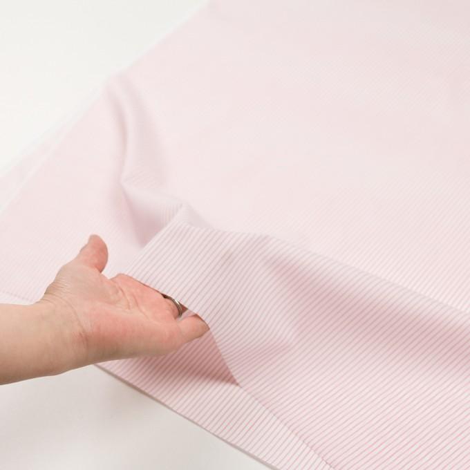 コットン×ストライプ(ピンク)×ボイル_全2色 イメージ5
