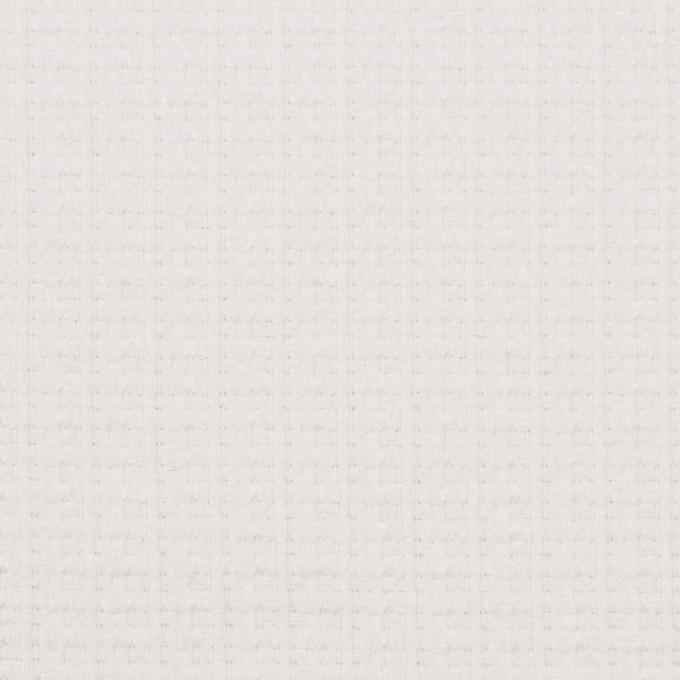 コットン&ナイロン×無地(オフホワイト)×斜子織_全2色_イタリア製 イメージ1