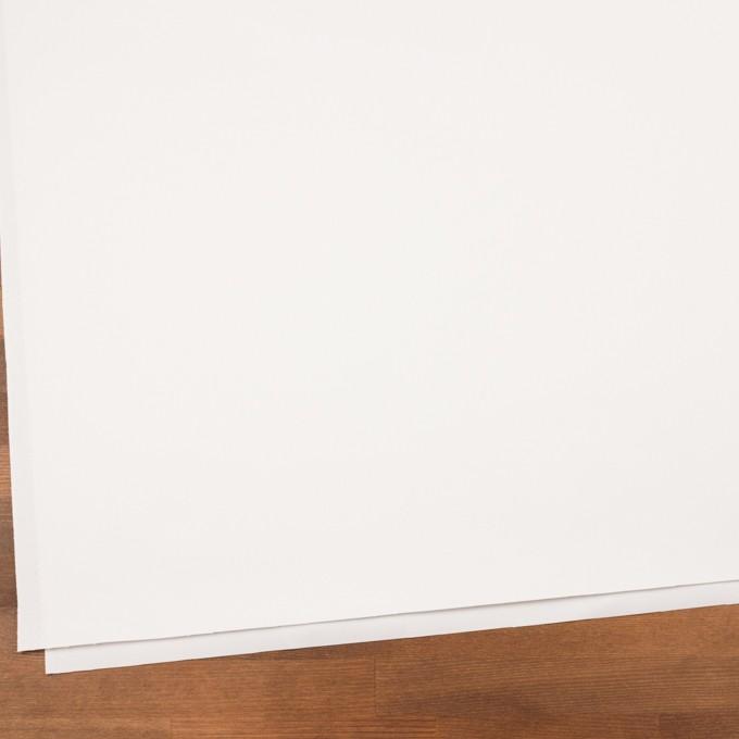 コットン×無地(ホワイト)×チノクロス イメージ2
