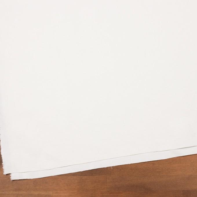コットン&シルク×無地(オフホワイト)×かわり織_イタリア製 イメージ2