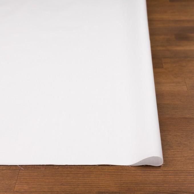 コットン×無地(オフホワイト)×ローン イメージ3