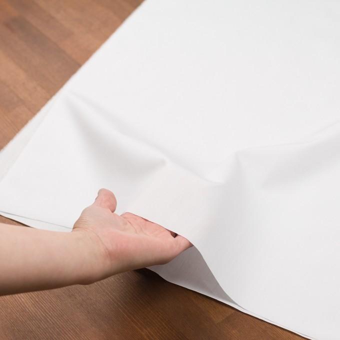 コットン×無地(ホワイト)×ブロード イメージ5