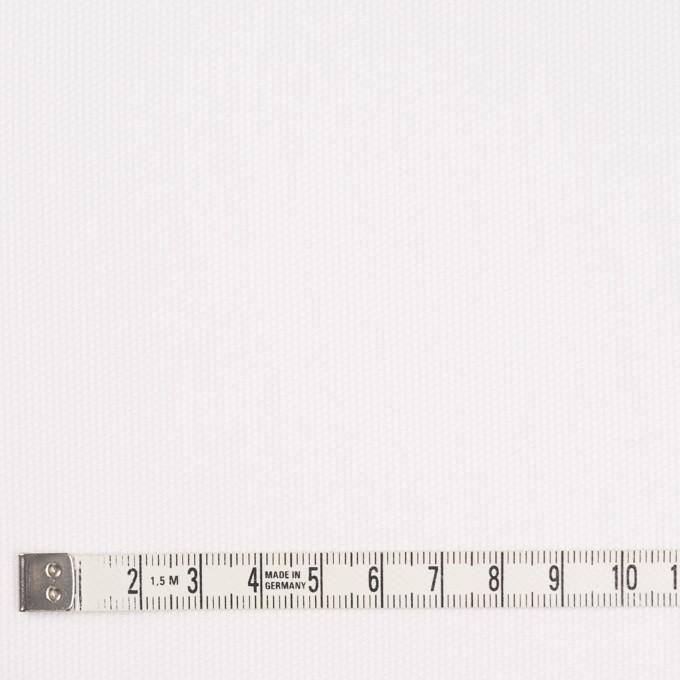 コットン×無地(オフホワイト)×ピケ イメージ4