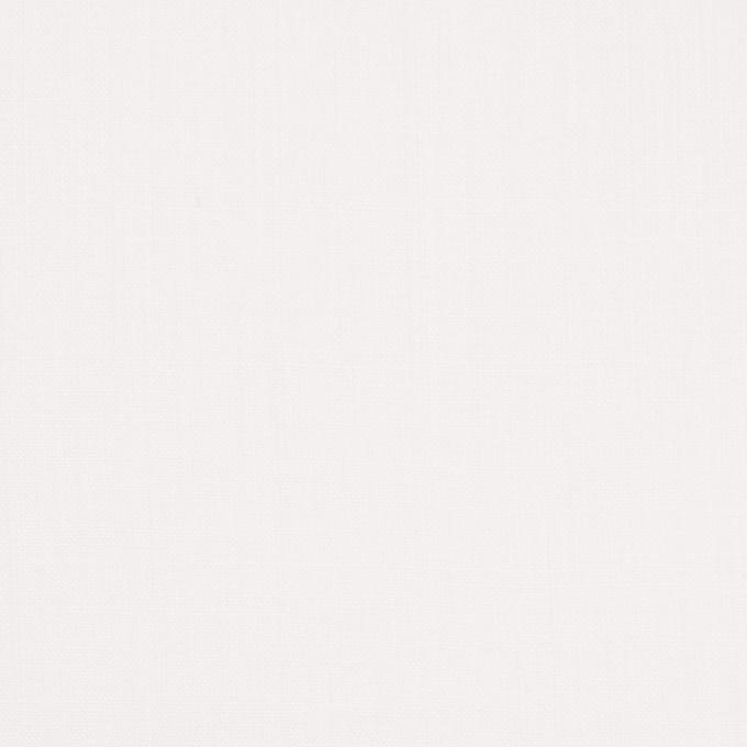 ラミー×無地(オフホワイト)×ボイル イメージ1