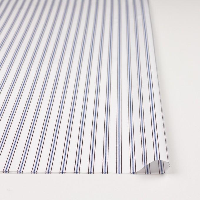 コットン×ストライプ(オフホワイト、サックス&ブラウン)×ドビーブロード イメージ3