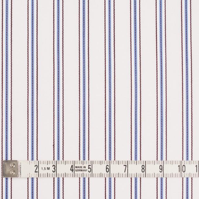 コットン×ストライプ(オフホワイト、サックス&ブラウン)×ドビーブロード イメージ4