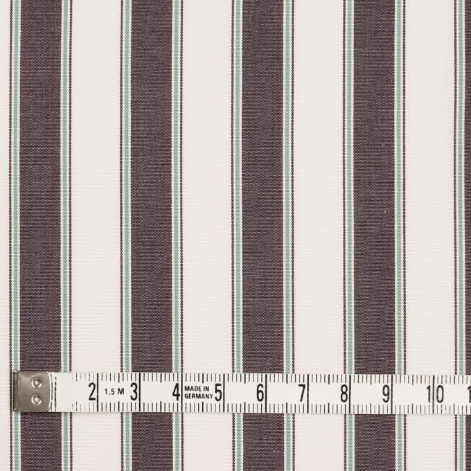 コットン×ストライプ(アッシュブラウン)×ブロード_全2色 イメージ4
