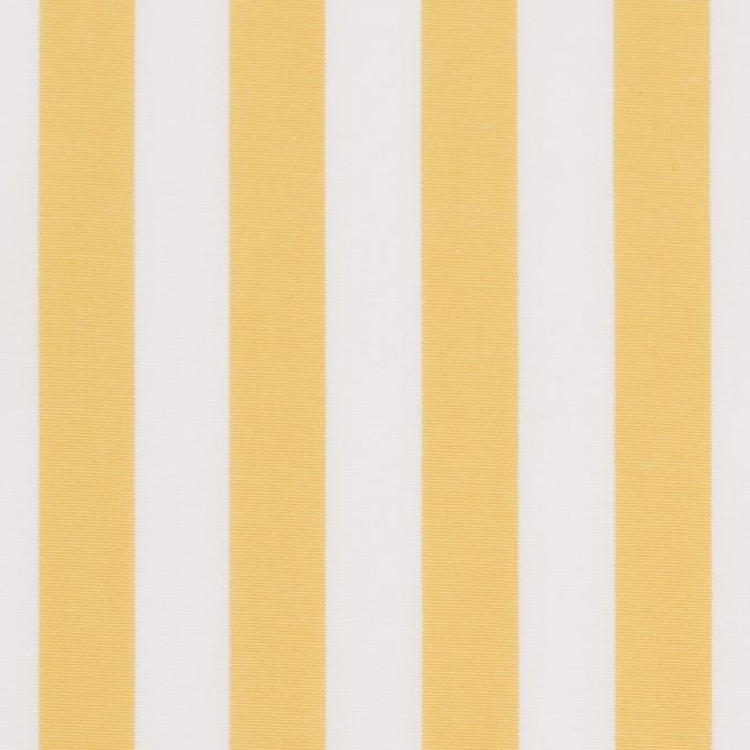 コットン×ストライプ(マスタード)×ブロード_全2色 イメージ1