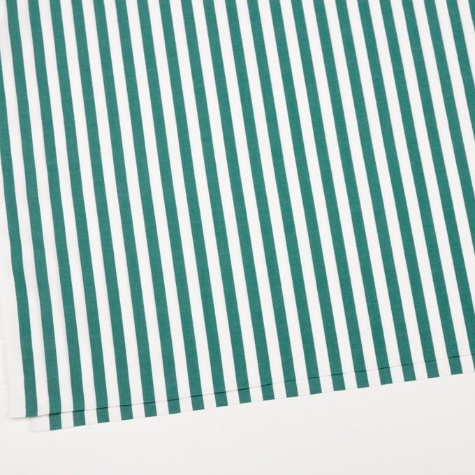 コットン×ストライプ(モスグリーン)×ブロード_全2色 イメージ2