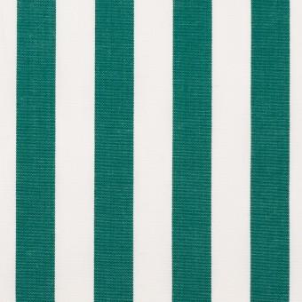 コットン×ストライプ(モスグリーン)×ブロード_全2色 サムネイル1