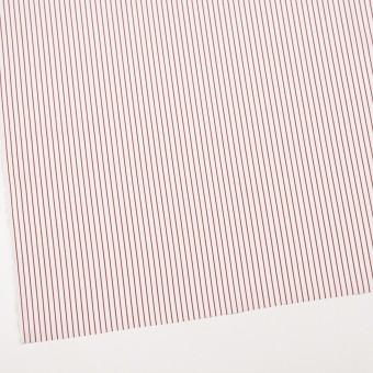 コットン×ストライプ(レッド)×ブロード_イタリア製 サムネイル2