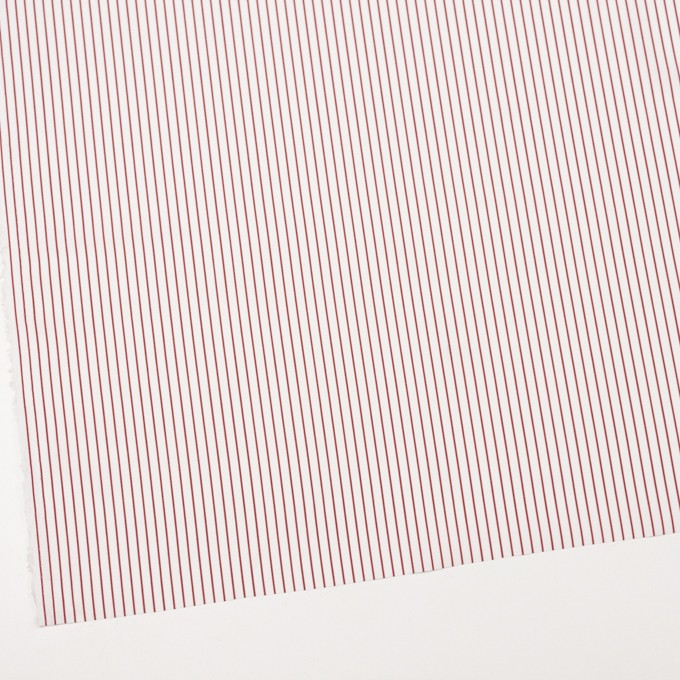 コットン×ストライプ(レッド)×ブロード_イタリア製 イメージ2