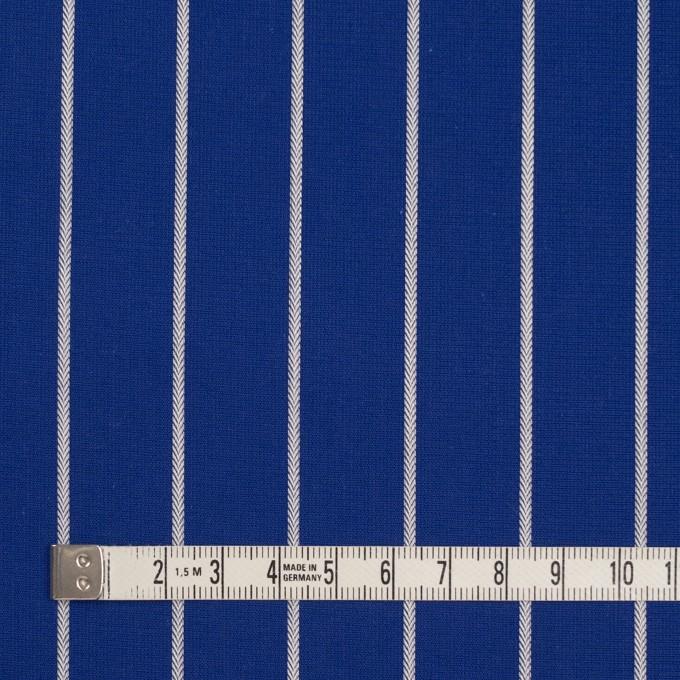 コットン×ストライプ(マリンブルー)×かわり織 イメージ4