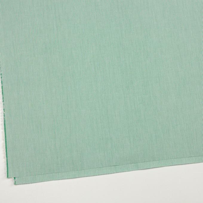 コットン×ストライプ(グリーン)×コードレーン_全2色 イメージ2