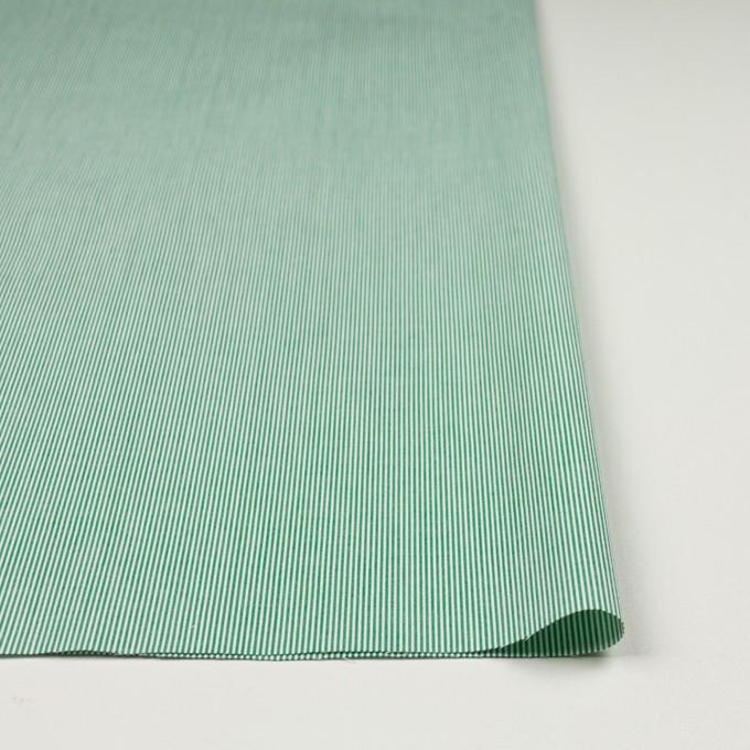 コットン×ストライプ(グリーン)×コードレーン_全2色 イメージ3