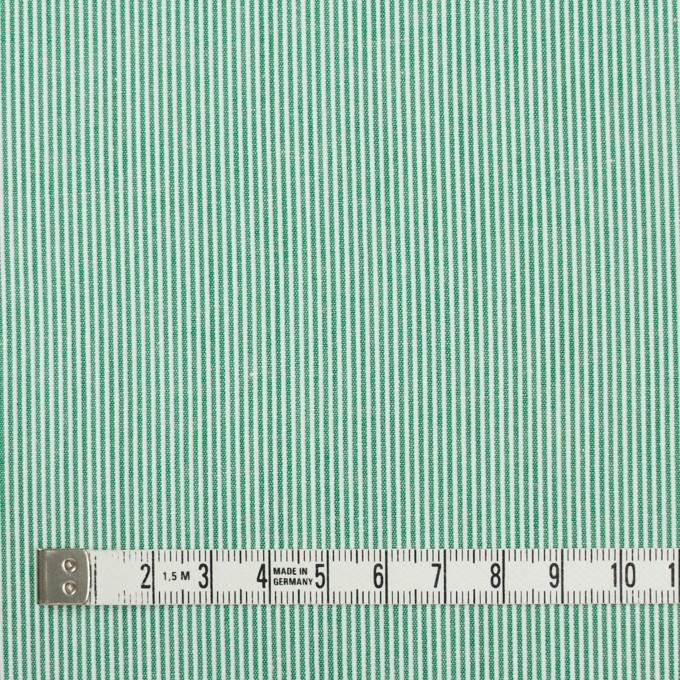 コットン×ストライプ(グリーン)×コードレーン_全2色 イメージ4