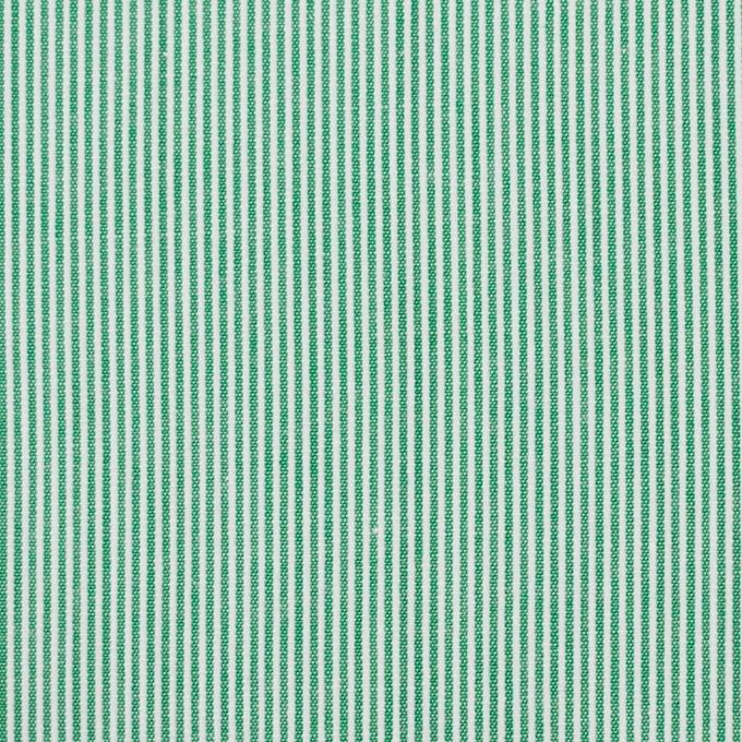 コットン×ストライプ(グリーン)×コードレーン_全2色 イメージ1