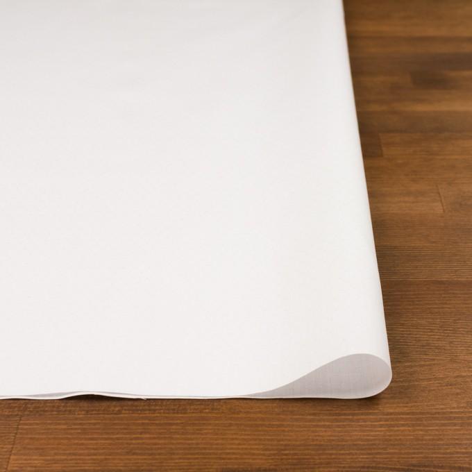 コットン×ドット(ホワイト)×ブロードジャガード イメージ3