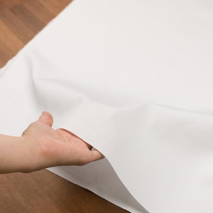 コットン×ドット(ホワイト)×ブロードジャガード イメージ5