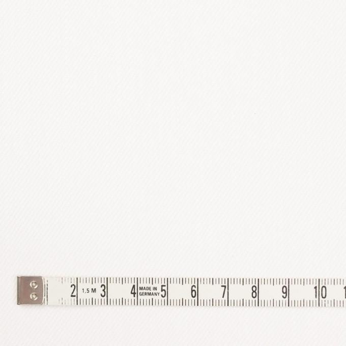 コットン×無地(オフホワイト)×カツラギ イメージ4