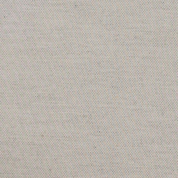 コットン×無地(ライトグレー)×オックスフォード_イタリア製 イメージ1