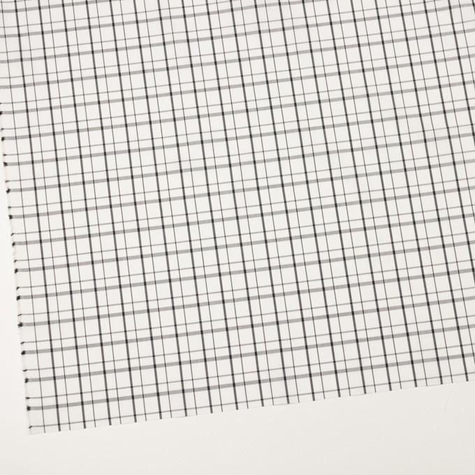 コットン×チェック(オフホワイト)×ブロード_全2色 イメージ2