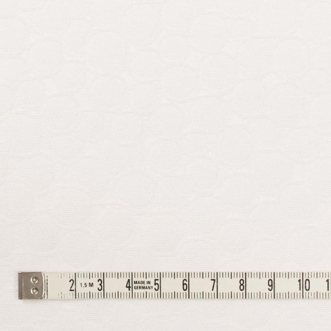 コットン×サークル(オフホワイト)×サテンジャガード イメージ4