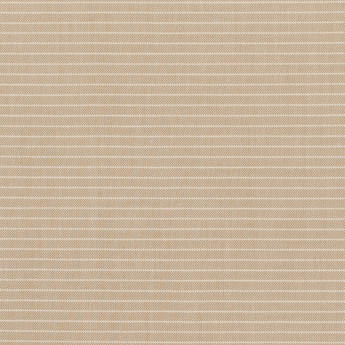 コットン×ボーダー(ベージュ)×シャンブレー_イタリア製 イメージ1