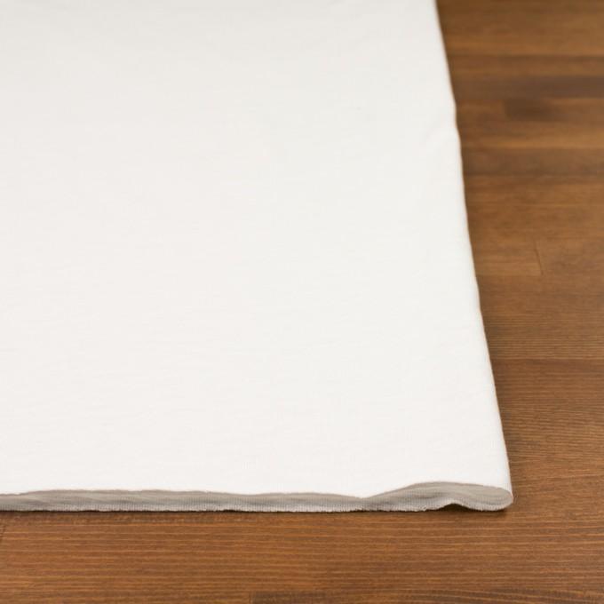 コットン×無地(オフホワイト)×天竺ニット イメージ3