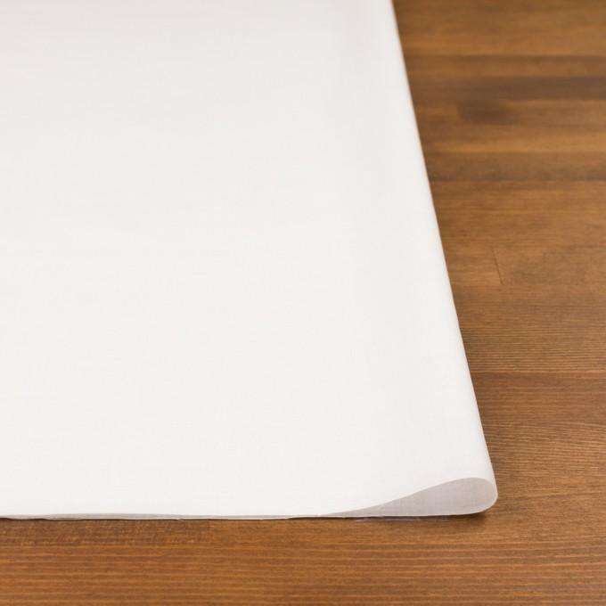 コットン×ボーダー(オフホワイト)×ローン刺繍No2_全4色 イメージ3