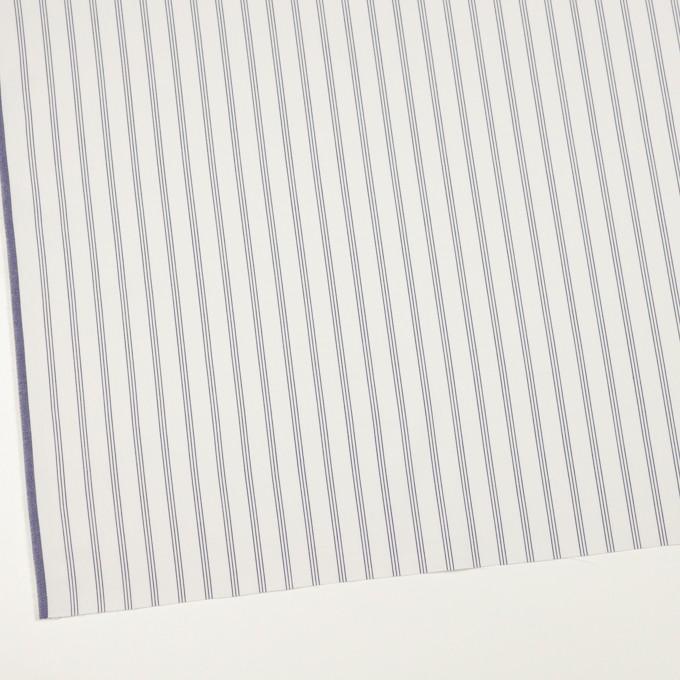 コットン×ストライプ(ネイビー)×サージ イメージ2