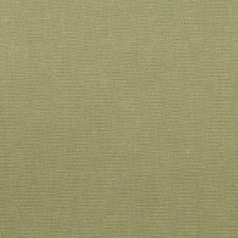 コットン×無地(アイビーグリーン)×キャンバス サムネイル1