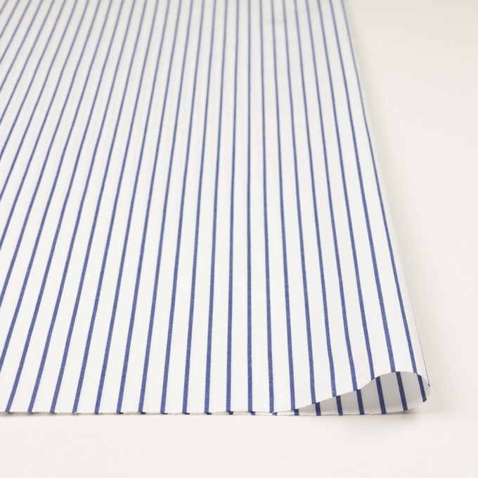 コットン×ストライプ(ブルー)×ポプリン_全2色 イメージ3