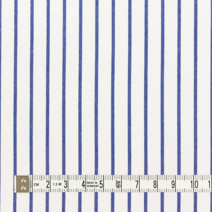 コットン×ストライプ(ブルー)×ポプリン_全2色 イメージ4