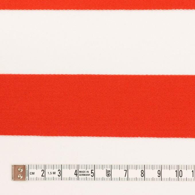 コットン×ボーダー(バーミリオン)×Wニット_全3色 イメージ4