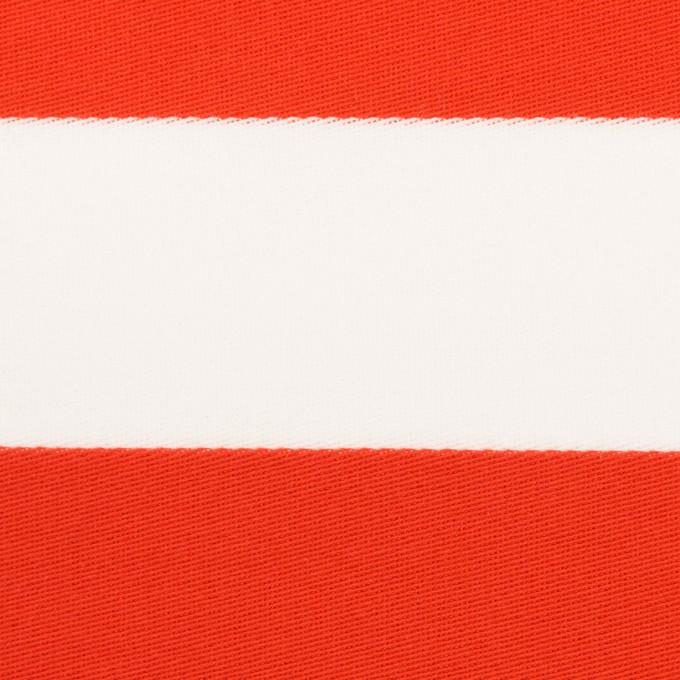 コットン×ボーダー(バーミリオン)×Wニット_全3色 イメージ1