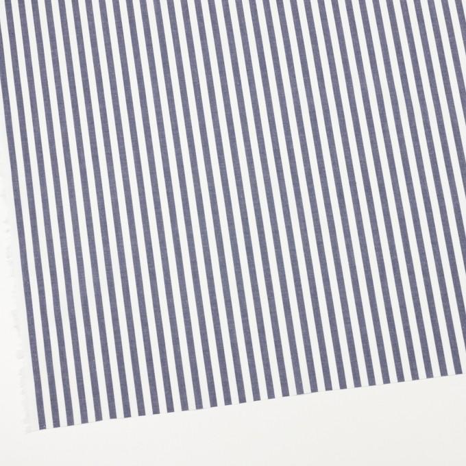 コットン×ストライプ(アッシュネイビー)×ブロード イメージ2
