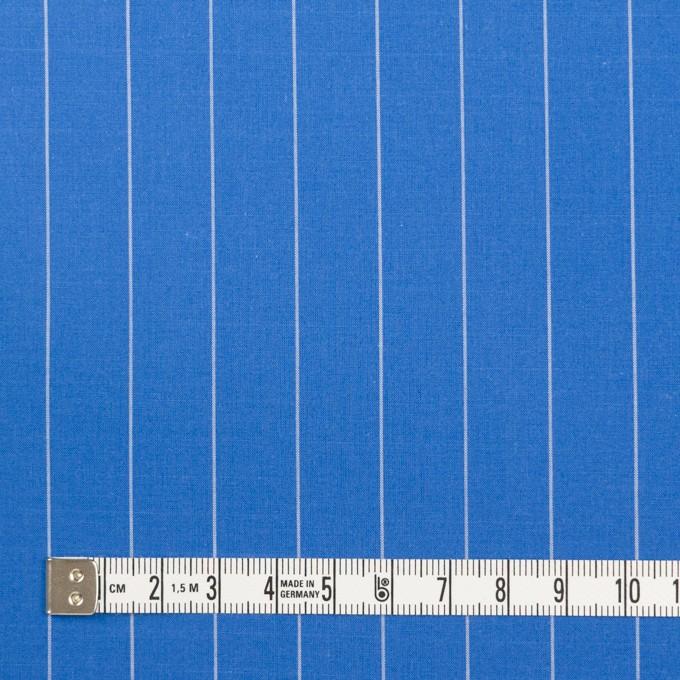 コットン×ストライプ(ゼニスブルー)×ブロード イメージ4