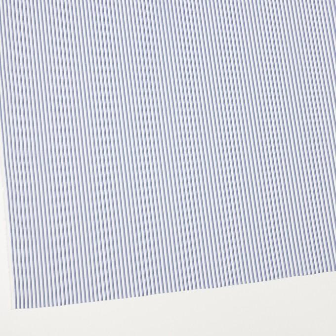 コットン×ストライプ(アッシュブルー)×ブロード イメージ2