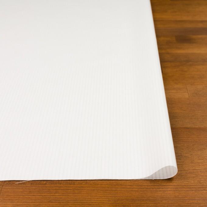 コットン×ストライプ(オフホワイト)×ブロード_全2色 イメージ3