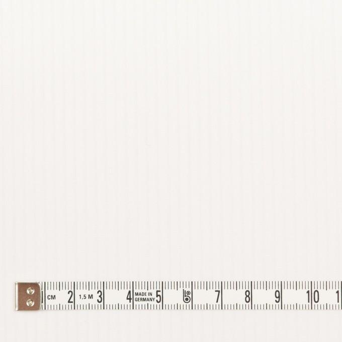 コットン×ストライプ(オフホワイト)×ブロード_全2色 イメージ4