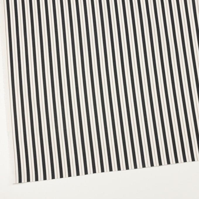 コットン×ストライプ(クリーム&ブラック)×ブロードジャガード イメージ2