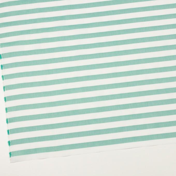 コットン×ボーダー(エメラルドグリーン)×ブロード&ヘリンボーン イメージ2