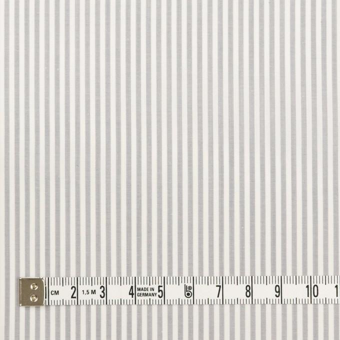 コットン×ストライプ(ライトグレー)×ブロード イメージ4