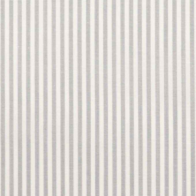 コットン×ストライプ(ライトグレー)×ブロード イメージ1