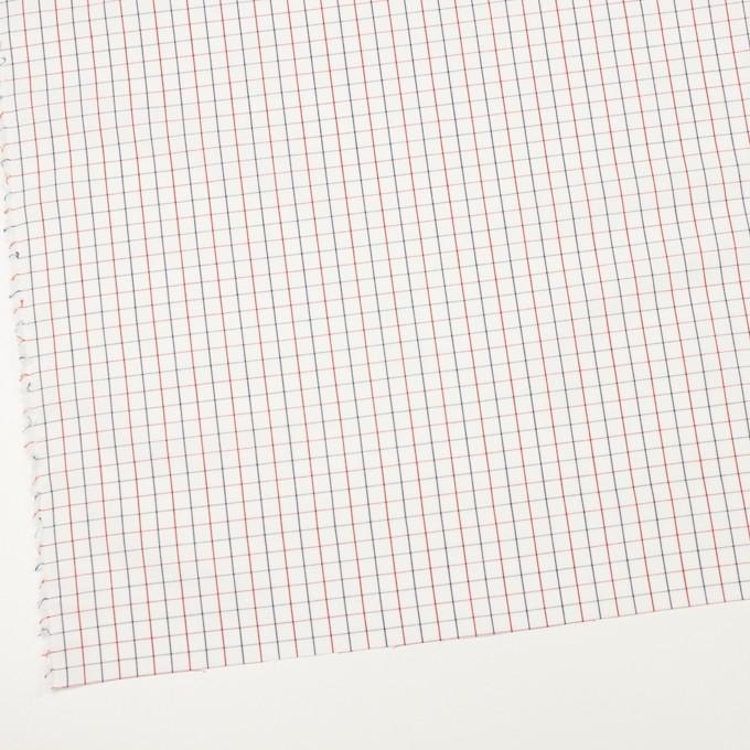 コットン×チェック(トリコロール)×ブロード イメージ2