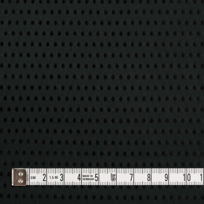 コットン×ドット(ブラック)×ローンドビー イメージ4